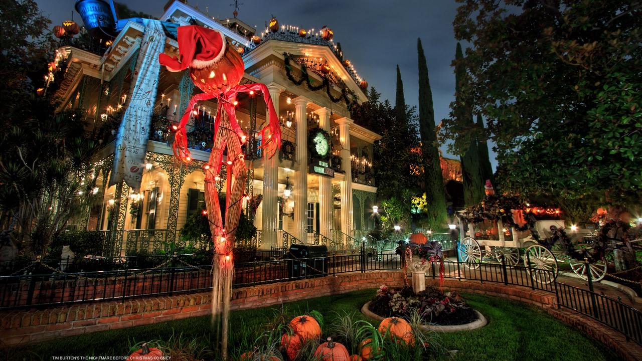 Can You Take Food Into Disneyland