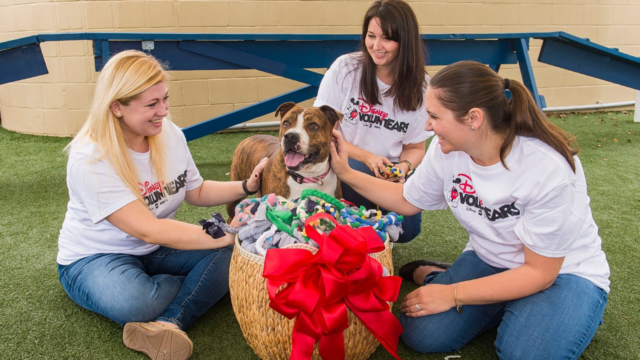 "Pet Alliance of Greater Orlando Receives ""Playful"" Donation from Disney Vacation Club VoluntEARS"