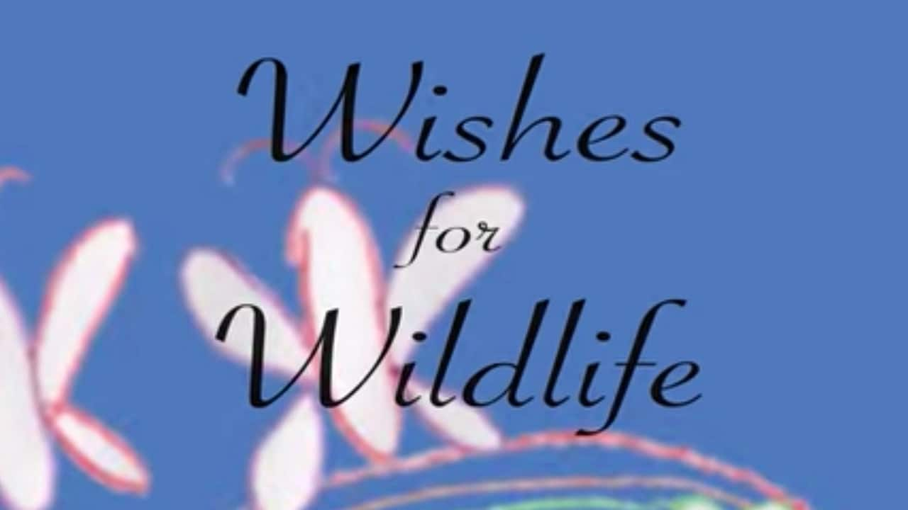 Wildlife Wednesday: Children Share Their Wishes for Wildlife: Butterflies