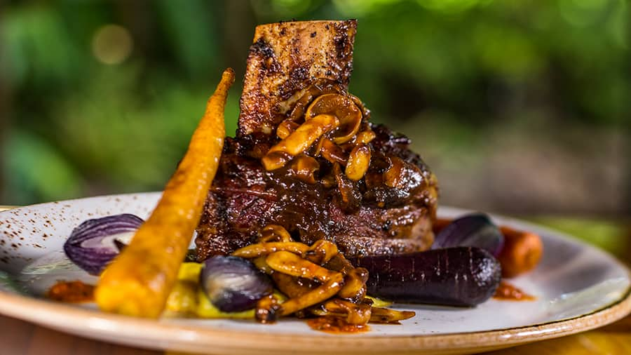 New Chefs, New Menu at Jiko—The Cooking Place at Disney's Animal Kingdom Lodge
