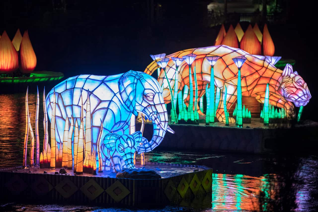 All in the Details: Learn About The 'Rivers of Light' Animal Spirit Guides