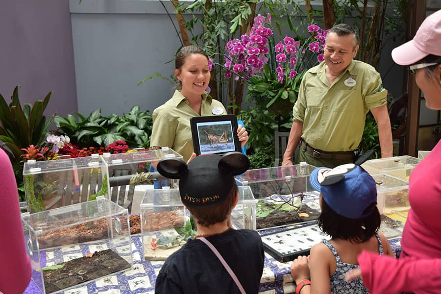 Wildlife Wednesday: Celebrate Earth Month at Disney Parks and Resorts