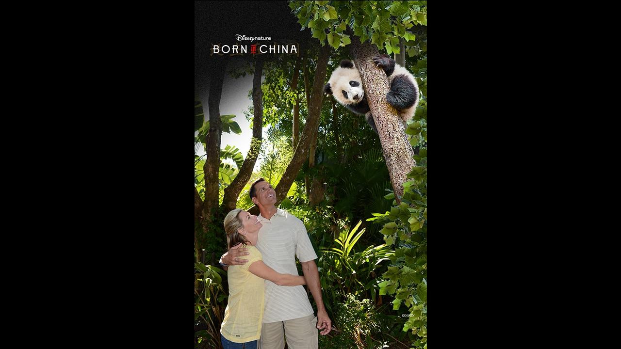 Celebrate Earth Day with Disney PhotoPass at Disney's Animal Kingdom April 21-23