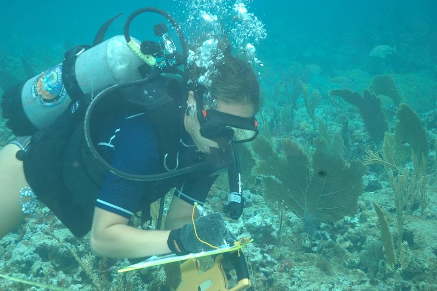 Celebrate World Ocean Day June 8