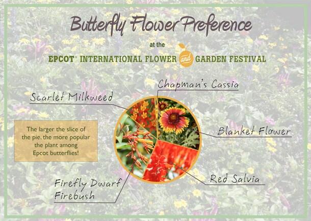 Wildlife Wednesday: Celebrate Pollinators!