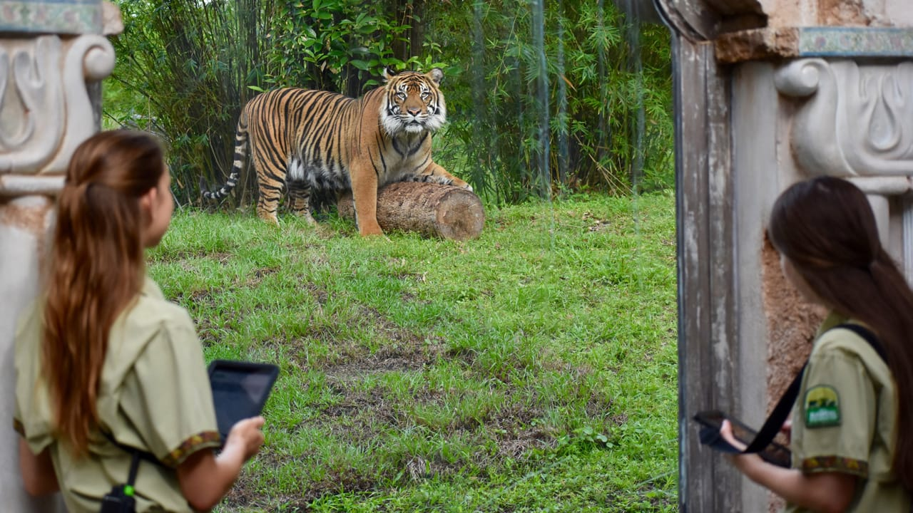 Wildlife Wednesday: Animal Planet Highlights Our Conservation Efforts