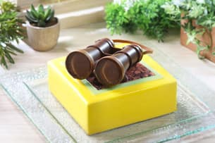 Binocular-shaped Explorer (Exotic Fruit Mousse Cake