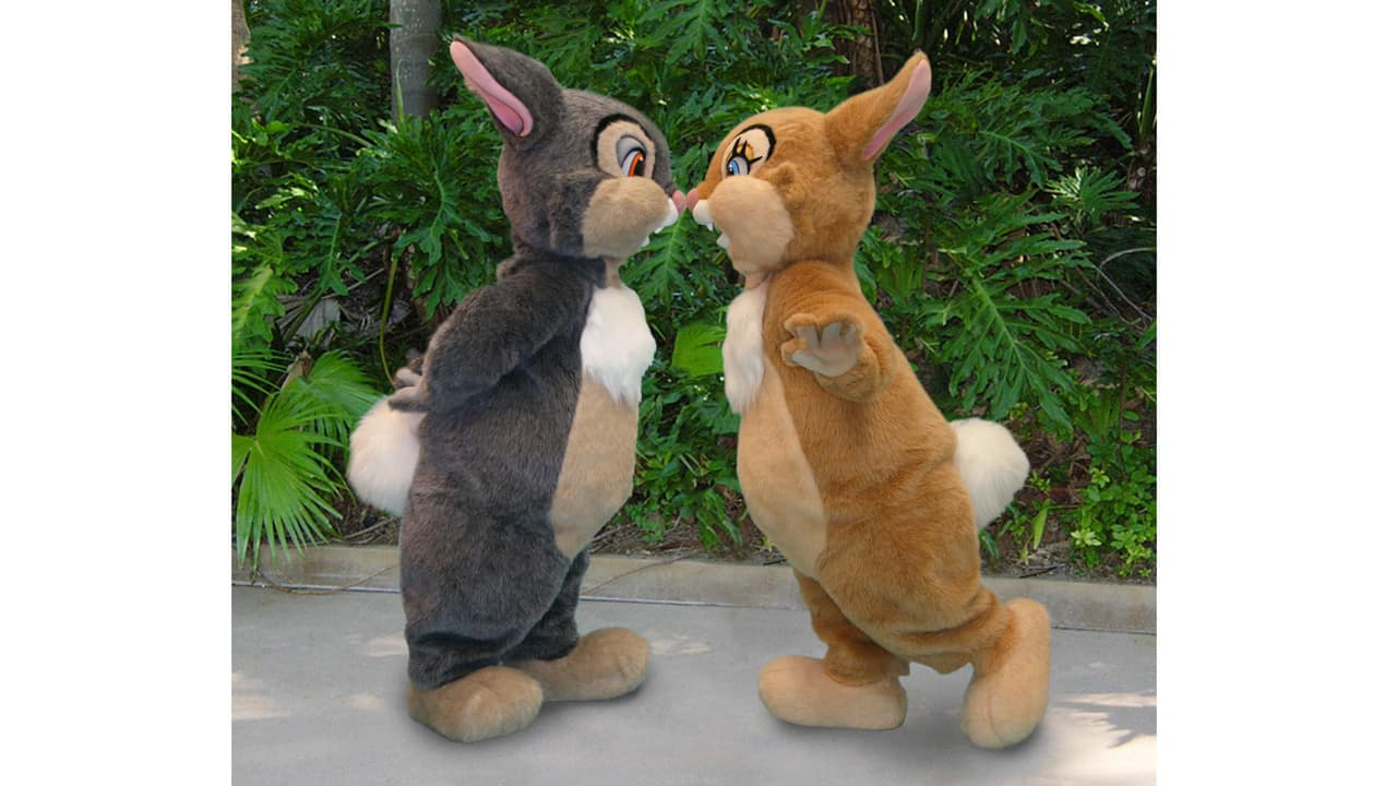 Thumper and Miss Bunny