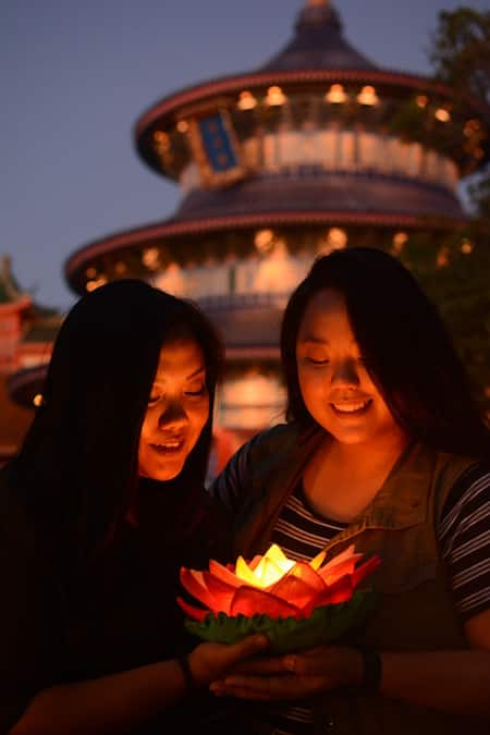 Glowing Lotus Photo from Photopass