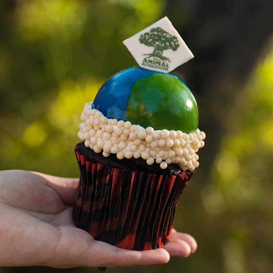 Earth Day Cupcake at Disney's Animal Kingdom for Party for the Planet