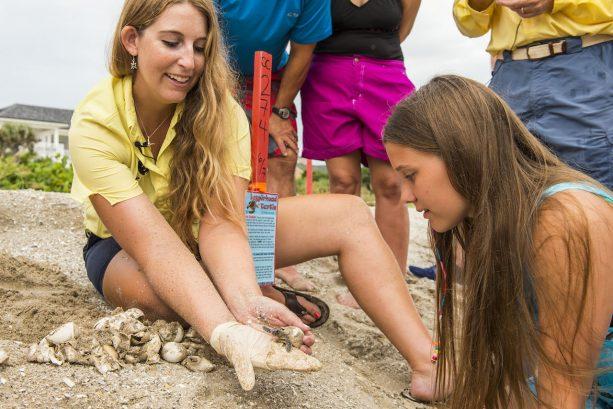 Tour de Turtles at Vero Beach Resort