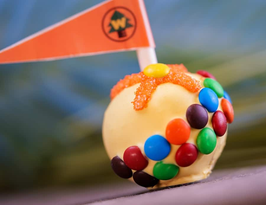 Russell Cake Pop for Pixar Fest at Candy Palace at Disneyland Park