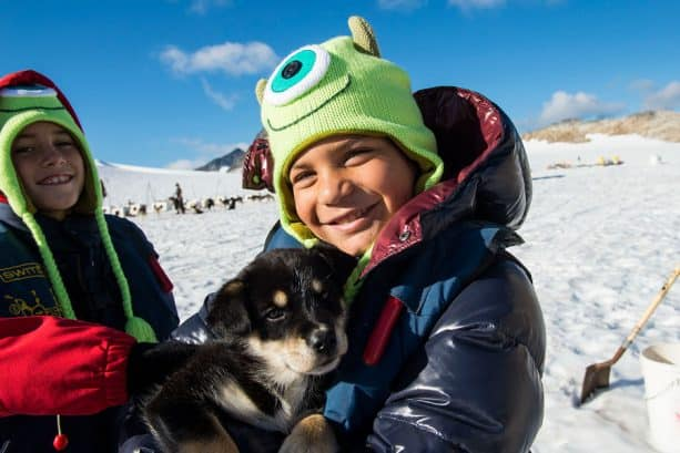 Cuddle with puppies on Dog Sled Port Adventures with Disney Cruise Line in Alaska