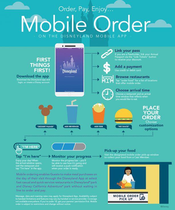 Disneyland App infographic