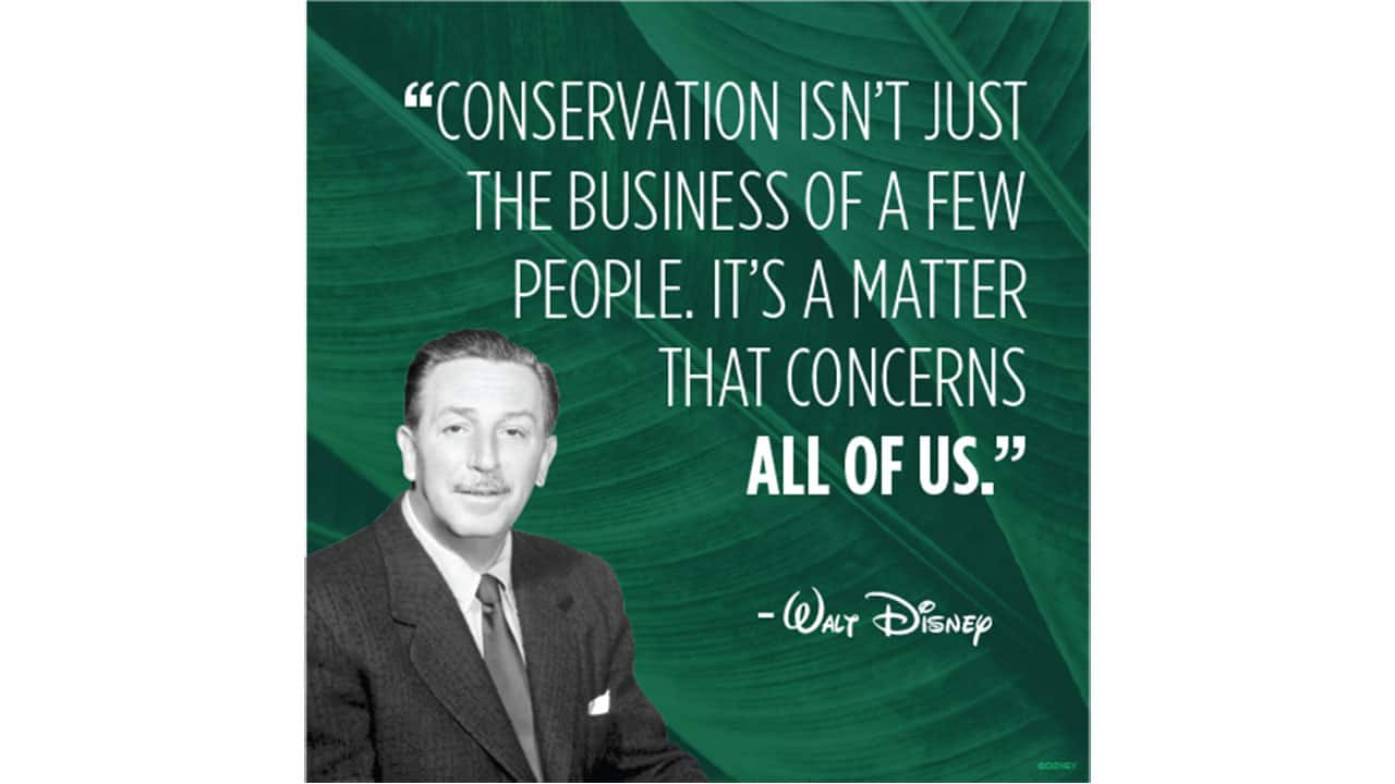 Disney Expands Environmental Commitment By Reducing Plastic Waste Disney Parks Blog