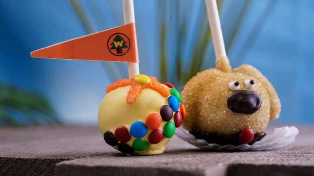 Dug and Russell Chocolate Cake Pops