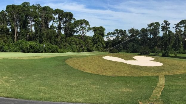 Mickey-Shaped Bunker at Walt Disney World Resort
