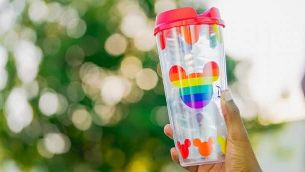 Rainbow Tumbler at Disneyland Resort