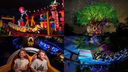 'Disney After Hours' Events Expand to Disney's Hollywood Studios & Disney's Animal Kingdom