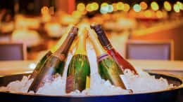 New Year's Eve Champagne at Disney Parks