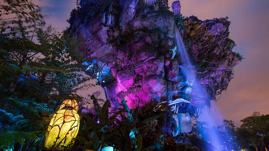Photo de Pandora World of Avatar durant les Disney After Hours.