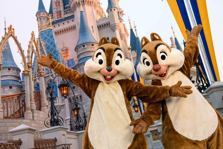Chip and Dale at Magic Kingdom Park