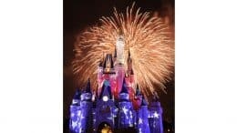 Fireworks at Magic Kingdom Park