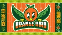 Orange Bird Digital Wallpaper