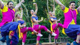 Bollywood Beats at Disney's Animal Kingdom park