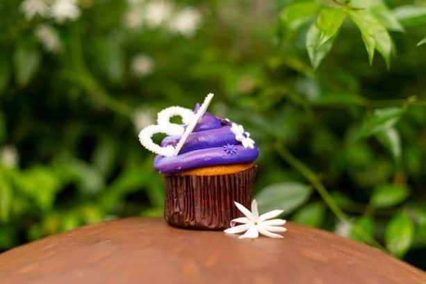 International Women's Day Cupcake from Creature Comforts at Disney's Animal Kingdom