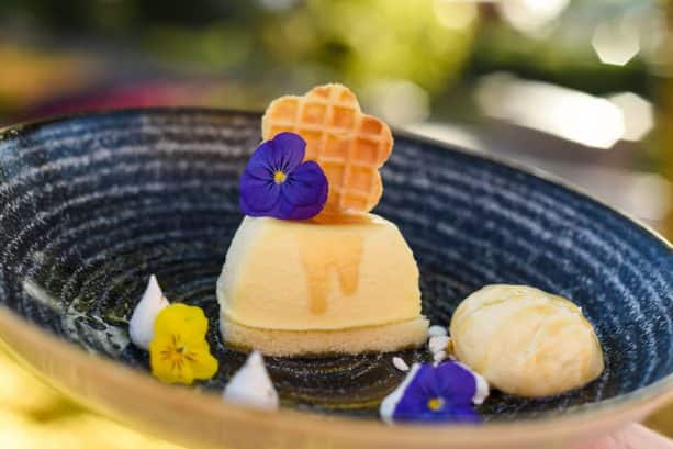 Local Wildflower Honey-Mascarpone Cheesecake from The Honey Bee-Stro at the 2019 Epcot International Flower & Garden Festival