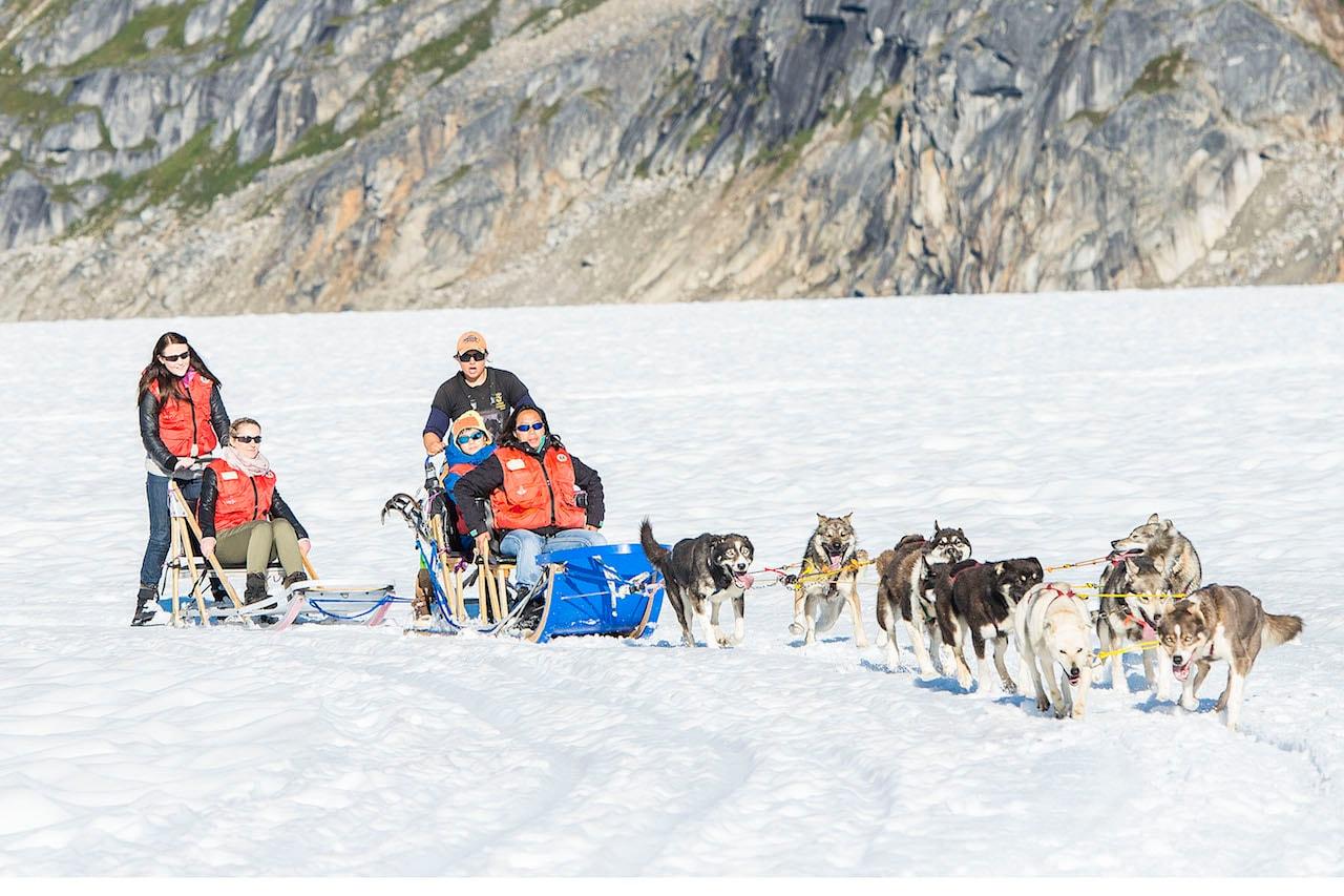 Family Dog Sledding in Alaska
