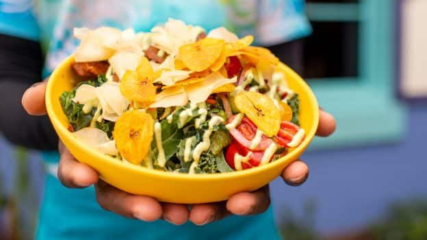 Foodie Guide to Food Bowls at Disney Parks