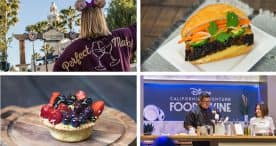Merchandise, Food and Seminars you can find at the 2019 Disney California Adventure Food & Wine Festival