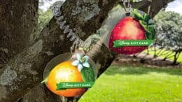 2019 Epcot International Flower & Garden Festival Disney Gift Card