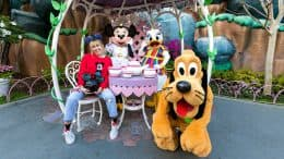 Miley Cyrus Enjoys Tea Time with Minnie, Daisy and Pluto During Get Your Ears On – A Mickey and Minnie Celebration at Disneyland Park