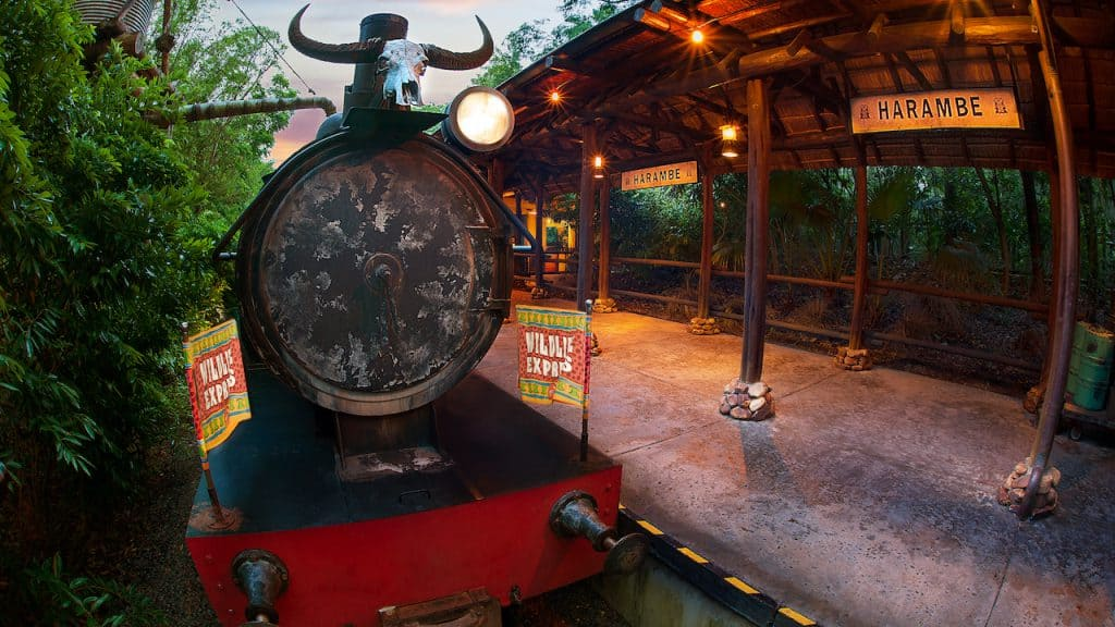 Circle of Flavors: Harambe at Night at Disney's Animal Kingdom