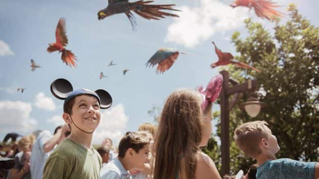 Party for the Planet at Disney's Animal Kingdom