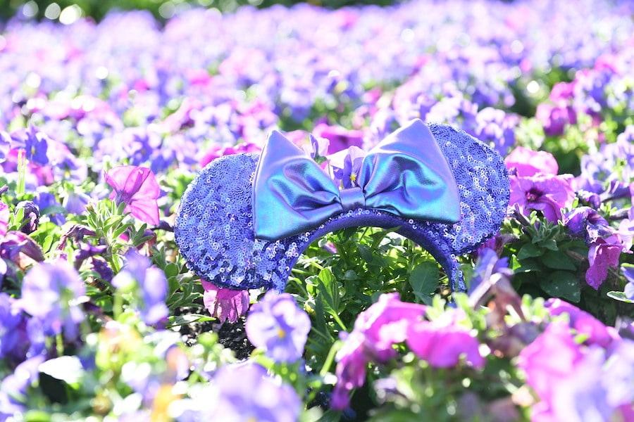 Purple Minnie Mouse ear headbands