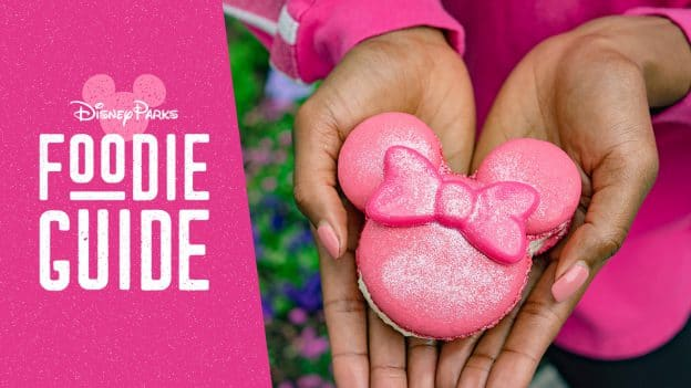Foodie Guide to Imagination Pink at Disney Parks