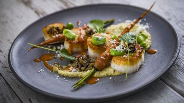 Scallops from Toledo – Tapas, Steak & Seafood