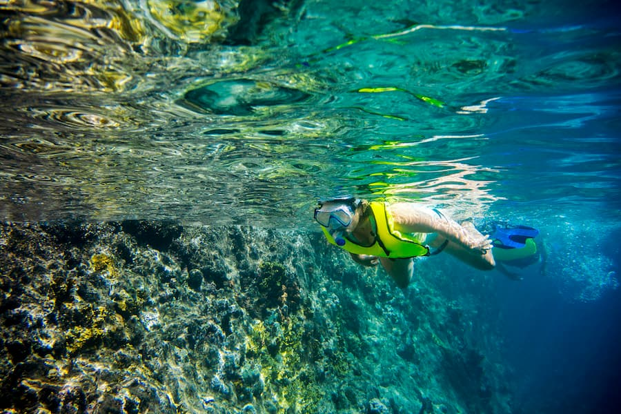Guest snorkeling along a reef in the Caribbean