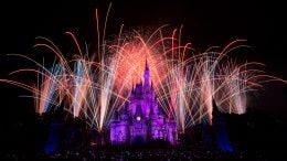 Fireworks at Walt Disney World Resort