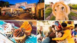 Circle of Flavors Harambe at Night at Disney's Animal Kingdom Theme Park