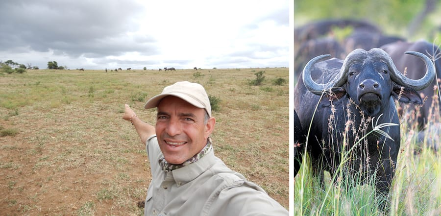 From the Savanna: Adventure Guide Craig Shares Insights on the Adventures by Disney South Africa Trip