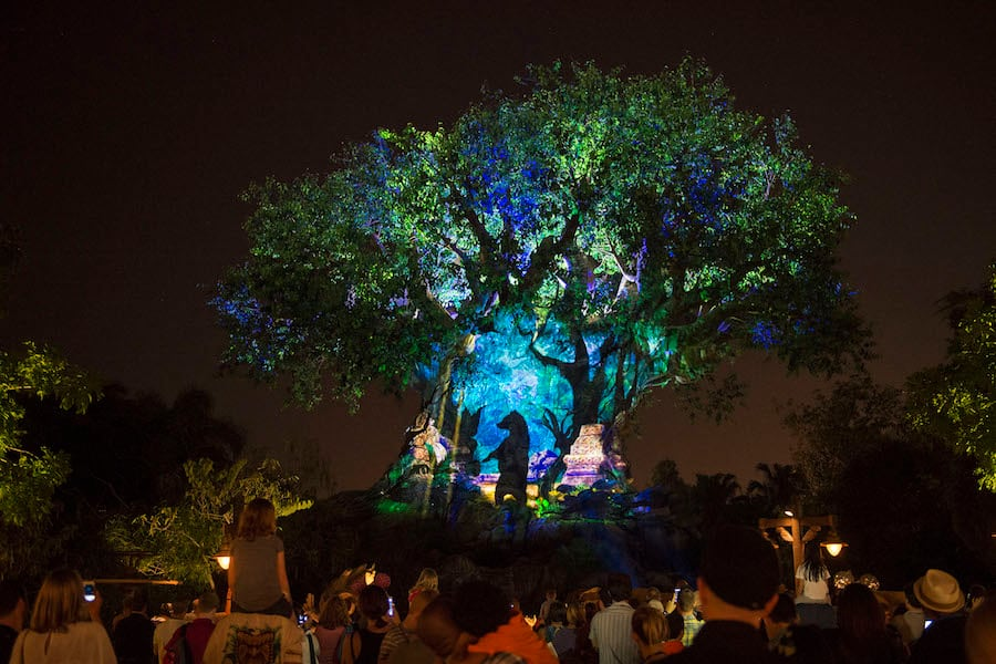 Tree of Life Awakens at Disney's Animal Kingdom at Night Walt Disney World Special Events