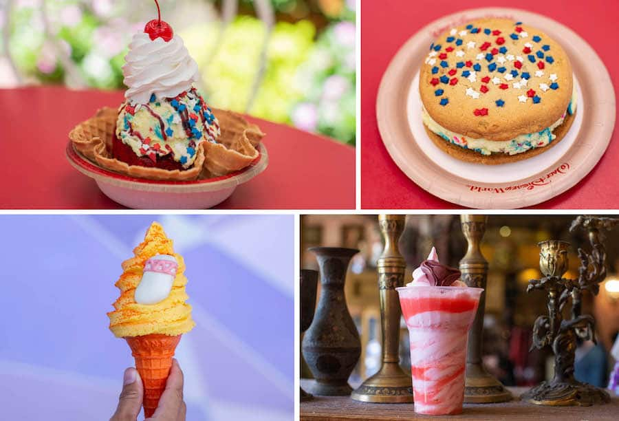 Various Cold Offerings from Magic Kingdom Park