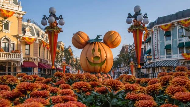 Mickey Halloween Pumpkin at Disneyland park