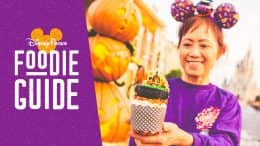 Foodie Guide to Mickey's Not-So-Scary Halloween Party 2019 at Magic Kingdom Park - featuring the Amuck, Amuck, Amuck Cupcake from Main Street Bakery