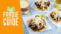 Foodie Guide to the 2019 Epcot International Food & Wine Festival